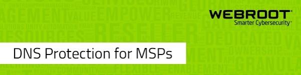 Neues Tool für Managed Service Provider: Sicherheit für KMUs mit DNS Protection